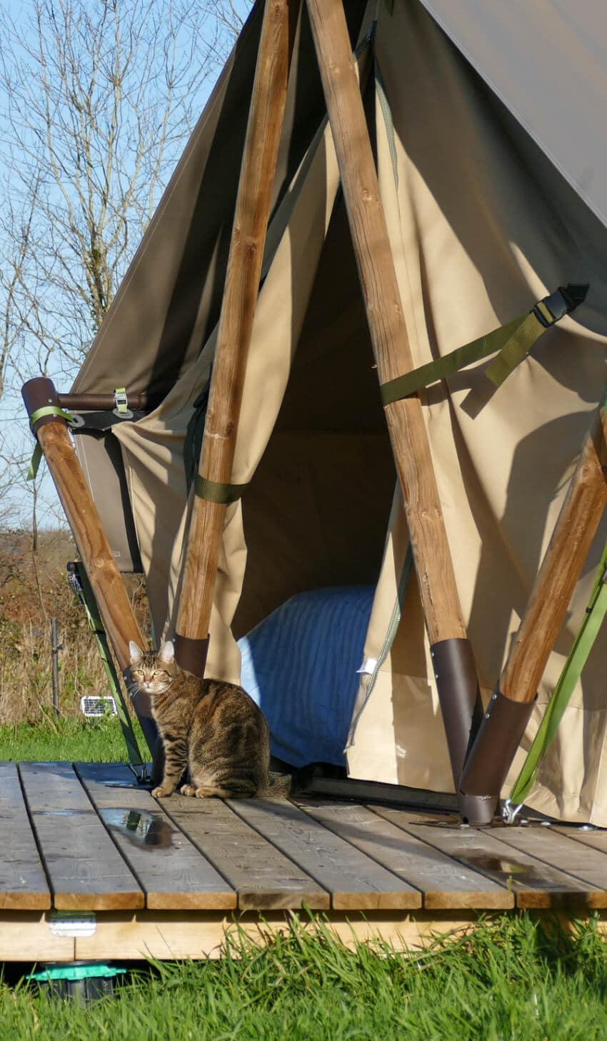 Location de tente canadienne