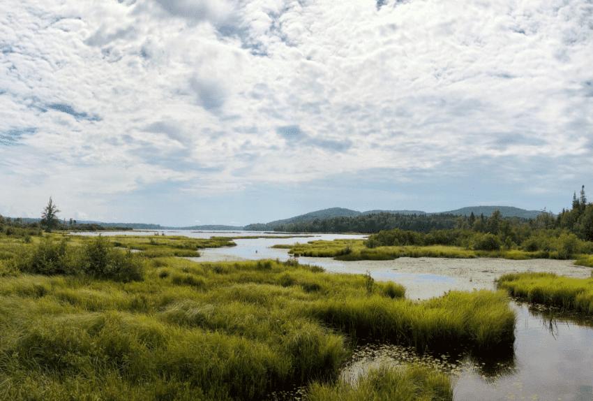 Parc naturel régional des marais du Bessin et du Cotentin